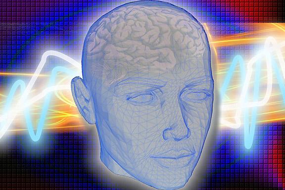 Katatonia – zmiany w mózgu